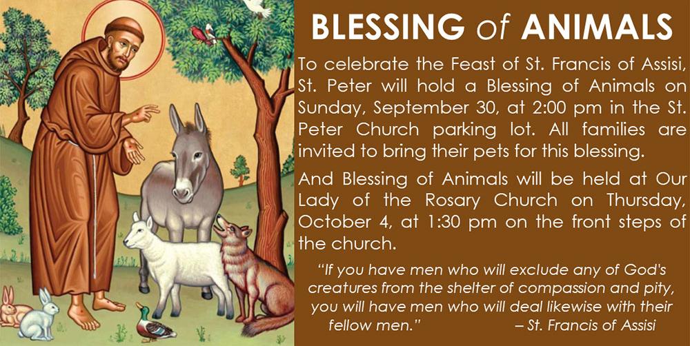 Blessing-of-Animals-slider