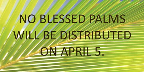 No-Palms-Virus-cropped